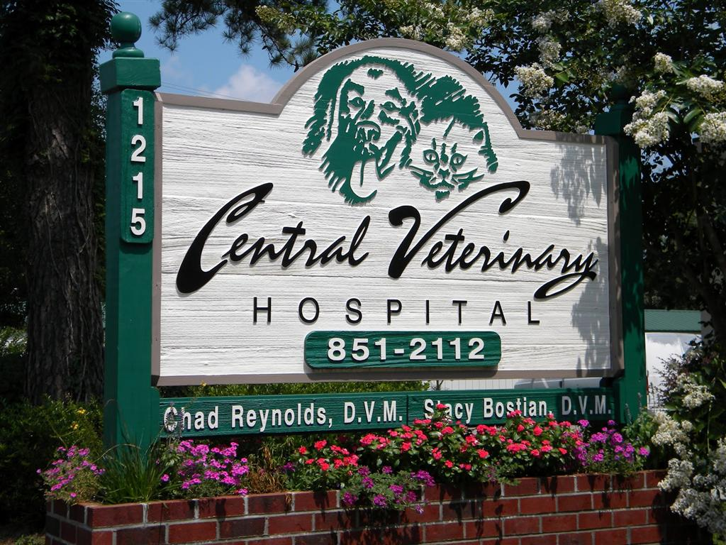 Central Veterinary Hospital